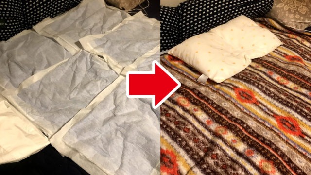 ペットシーツを敷き詰めて、上に薄い毛布をかぶせる